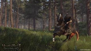 骑马与砍杀2:游戏截图3